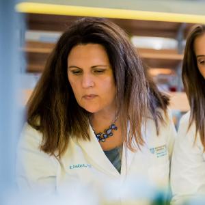 Understanding Ovarian Cancer Stem Cells